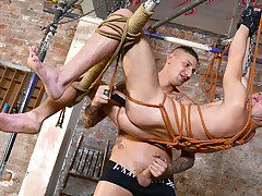 A Entirely Adjustable Twink Toy - Dmitry Osten & Tyler Jenkins